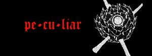 Chris Tianto - banner logo